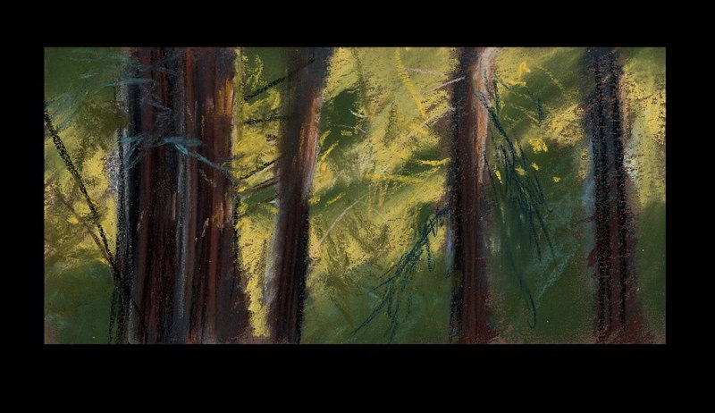 RedwoodStand